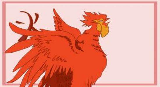Ayam Api